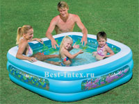 ������� �������� ������� Clearview Aquarium Pool Intex 57471, 159 � 159 � 50 ��